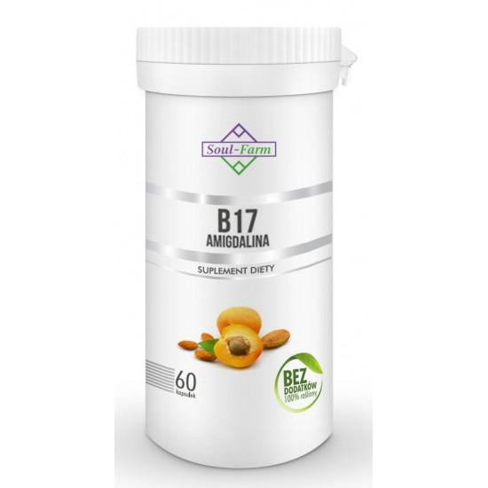 AMIGDALINA B17 (EKSTRAKT Z PESTEK MORELI 5:1) 260 mg 60 KAPSUŁEK - SOUL FARM